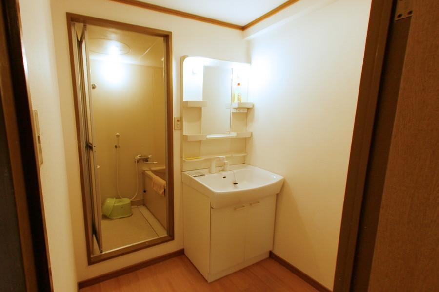 独立洗面台は大きめの鏡とシャンプードレッサーが特徴