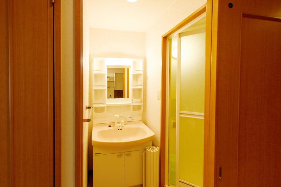 独立洗面台は大きな鏡が特徴。人気のシャンプードレッサータイプです
