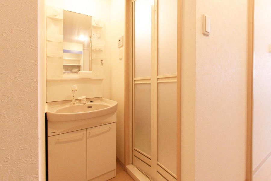 大きな鏡と収納抜群の洗面台。嬉しいシャワードレッサータイプです