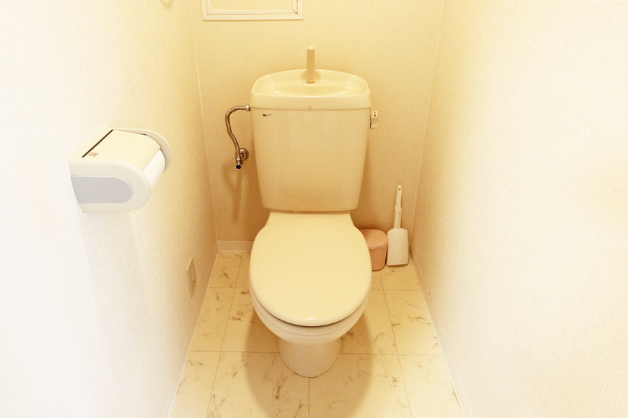 衛生面が気になるトイレはセパレートタイプで安心です
