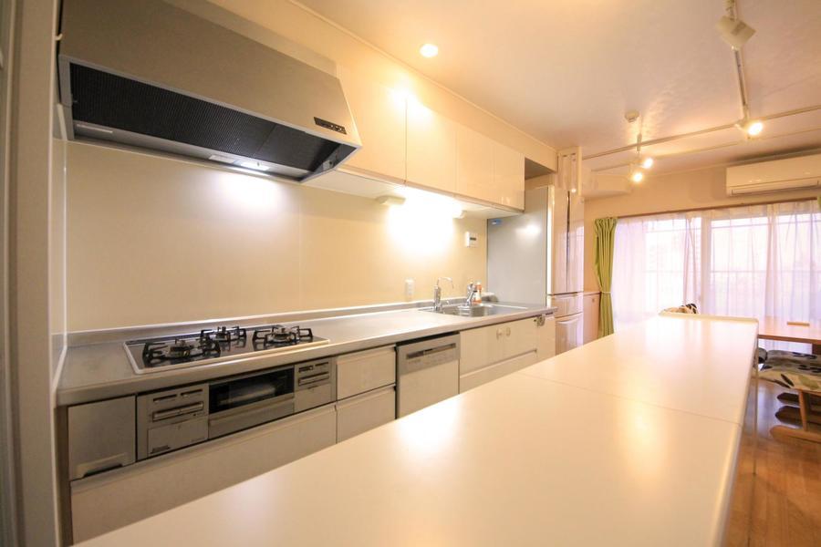 キッチンはカウンターテーブル付。テーブル下には家電類が設置されています