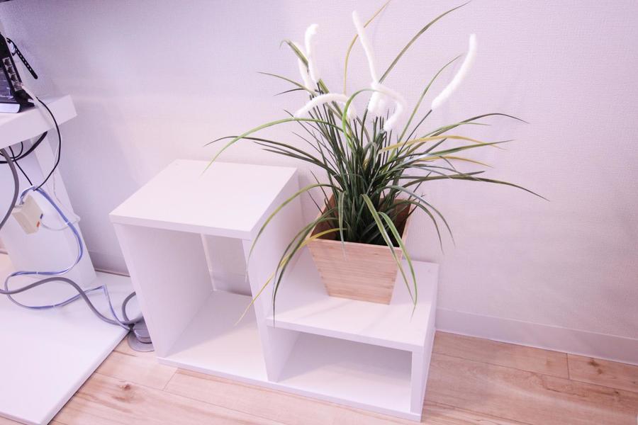 ラックに飾られた植物がさりげない安らぎの空間を演出します