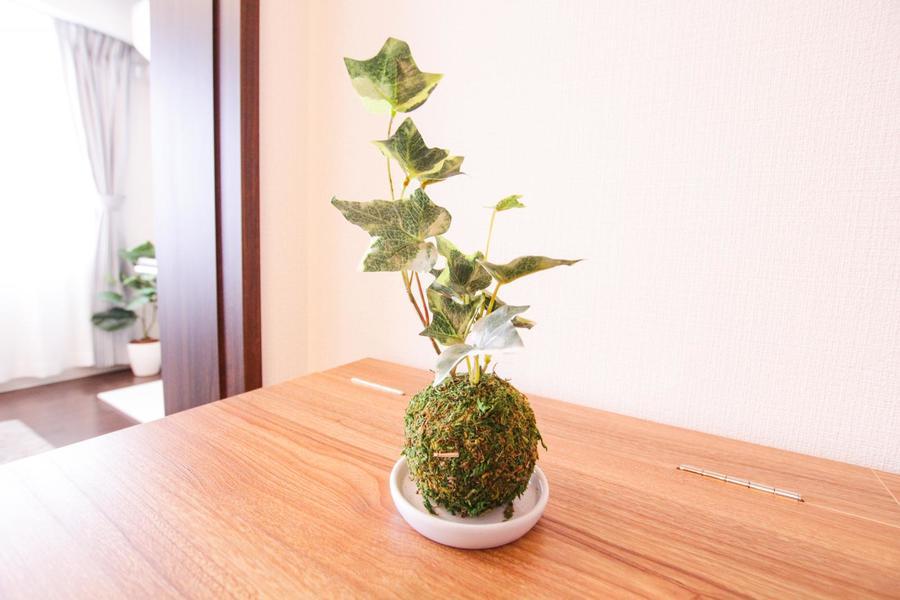 リビングと同じく寝室にも観葉植物を。和のテイストを感じさせる苔玉タイプ